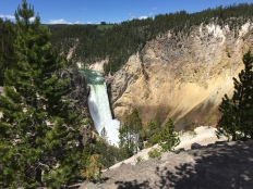 Lower Yellowstone Falls.